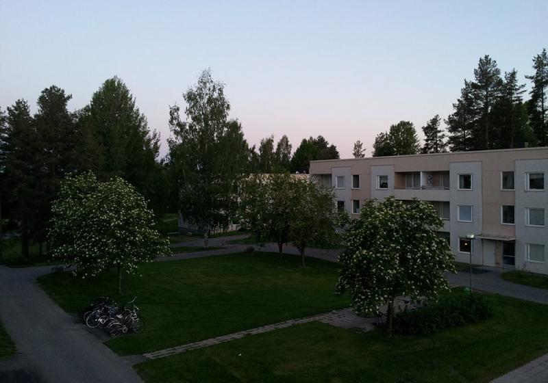 Imaginary Karin - bright summer night