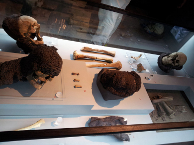 medieval bones and armour pieces at museum