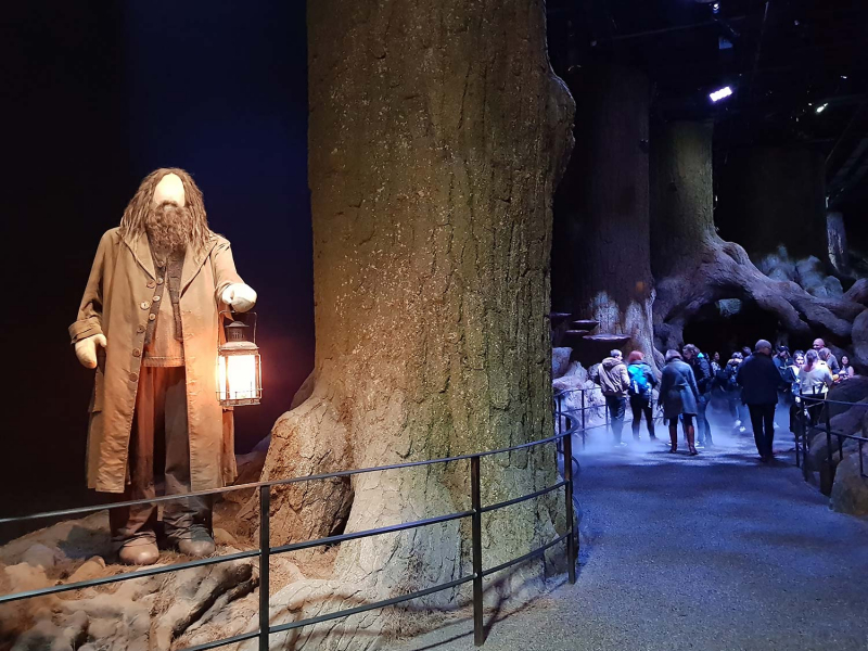 The Forbidden Forest at the Harry Potter studio Tour