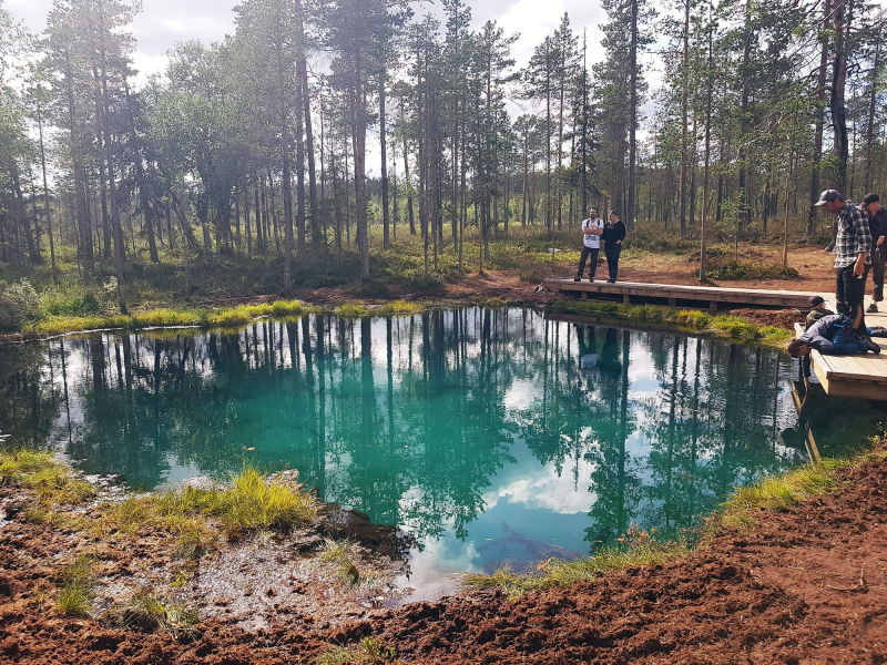 A small turquoise pond surrounded by pine trees