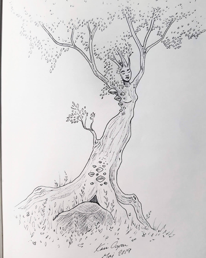 graphite drawing of a dryad