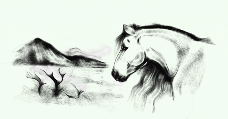Imaginary Karin - horse